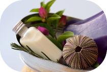 about-carefree-salon-spa